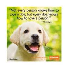 Quotes About Pets on Pinterest | Pet Quotes, Dogs and Love My Dog
