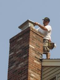 Keep Out Chimney Pests