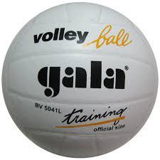 <b>Мяч волейбольный GALA Training</b>, натуральная кожа