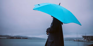 The <b>best umbrella</b> you can buy in 2019: Repel Windproof Travel ...