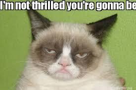 Meme Maker - I'm not thrilled you're gonna be a crazy cat lady ... via Relatably.com