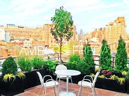 Small Picture Before After Photos of NYC Garden Landscape Design