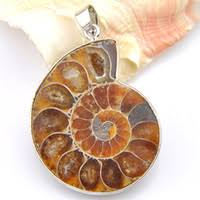 Wholesale Ammonite Pendants Wholesale - Buy Cheap Ammonite ...