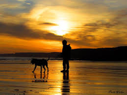 Image result for boy and dog on beach