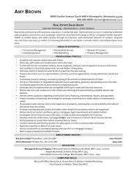 travel consultant duties resume bio data maker travel consultant duties resume travel agent sample resume cvtips travel agent job description and duties travel