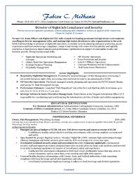 professional resume examples resume giant dir security compliance sample resume