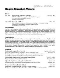 resume wizard  cover letter in spanish translation resume wizard resume wizard resumes