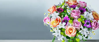 Image result for waitrose flowers