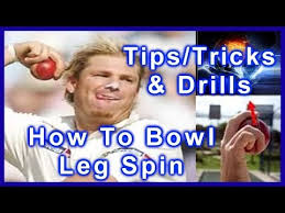 Image result for bowling a cricket ball