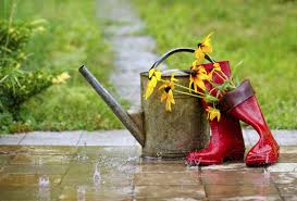 """Résultat de recherche d'images pour """"image de pluie"""""""