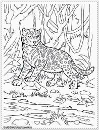 Small Picture Download Coloring Pages Jungle Animal Coloring Pages Jungle