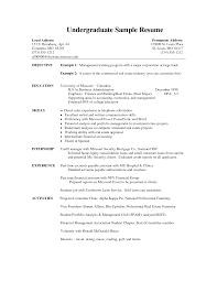 sample resumes  resume templates examples  sample resume examples    sample resumes