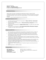 picturesque resume example professional summary as sap and adorable