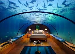 1000 images about amazing bedrooms on pinterest amazing bedrooms bedrooms and aquarium amazing bedrooms designs