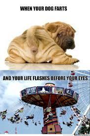 "Rip: ""death By Dog Fart"" by mcnabbanator - Meme Center via Relatably.com"