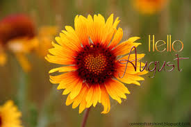 Image result for august sunflowers