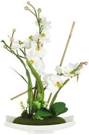 """<b>Декоративные цветы Dream Garden</b> """"Орхидея белая"""", на ..."""