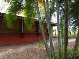 remax utila agent julie shigetomi island real estate restaurant caribbean 59k office design inspiration caribbean life hgtv law office interior