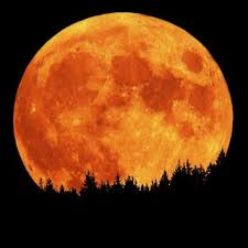 Full Moon Tonight Images?q=tbn:ANd9GcSfaNcx2G8I7kImMGsbT6a8ABQUpQBvA6vD6FTcmkeUxtGR9Kxl