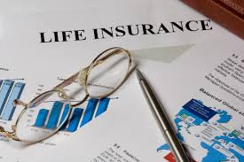 Image result for types of life insurance