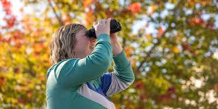 How to Choose <b>Binoculars</b> | REI Expert Advice