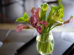 كيفية تنسيق الزهور images?q=tbn:ANd9GcS