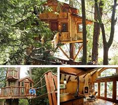 Amazing Tree Houses  Plans  Pictures  Designs  Ideas  amp  Kits    Seattle Tree House Architectural Designers
