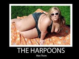 Fat Acceptance Movement | Know Your Meme via Relatably.com
