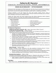 national account manager resume template cio resume example resume format pdf cio resume example resume format pdf