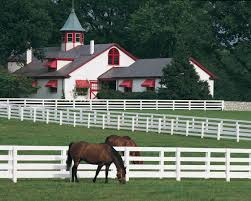 best images about kentucky