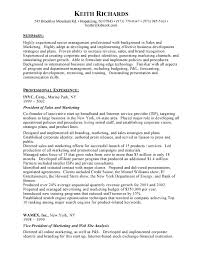 undergrad sample resume  intern student resume internship    resume format for assistant manager marketing vp marketing resume   marketing student resume