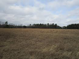 20 acres undeveloped land hunting building sites uc 20 acres undeveloped land hunting building sites