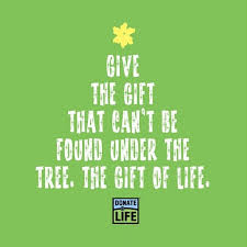 Image result for donor organization christmas photos