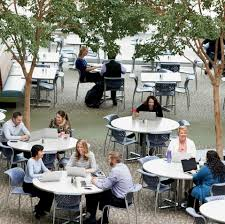 best buy jobs glassdoor best buy photo of our corporate cafeteria that offers an outdoor feel and a place