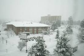 Image result for NAU snow