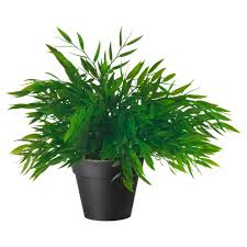 artificial plants for living room fejka artificial potted plant house bamboo diameter of plant pot  quot