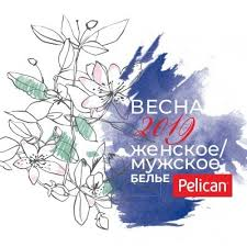 Spring 2019 <b>Pelican</b> Base Underwear