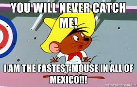 You will never catch me! I am the fastest mouse in all of mexico ... via Relatably.com