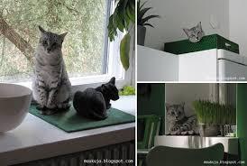 blog widget by linkwithin cat litter box furniture diy