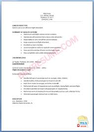 resume for flight attendant pin flight attendant resume example resume for flight attendant 0444