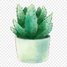 <b>Watercolor cactus plants</b> in <b>potted plants</b> png image_picture free ...
