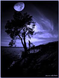 ▒▓███►ஐღ♫ همســــ لحلمي البعيد ــــات images?q=tbn:ANd9GcS
