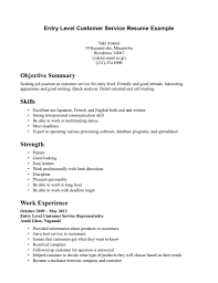 objective summary for resume experience resumes resume summary examples entry level tikusgot oh my gods