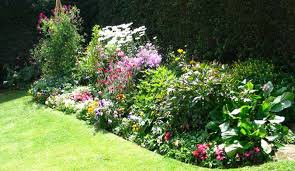Small Picture flower garden ideas beginners Perennial Garden Design to Enhance