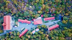 Отель Best Western Alva 4* Цахкадзор, Армения – официальный ...