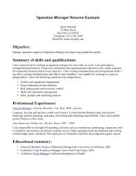 customer service resume summary statement cipanewsletter example it resume resume format pdf good resume