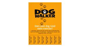 Dog Walking Business tear sheet flyer template | Zazzle