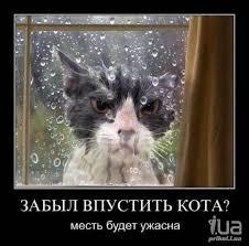 МИД РФ требует от Польши объяснить отказ во въезде путинским байкерам - Цензор.НЕТ 8721