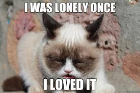 I WAS LONELY ONCE I LOVED IT - grumpy kitty meme - quickmeme via Relatably.com