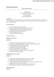 sample charge template professional experience school nurse resume sample